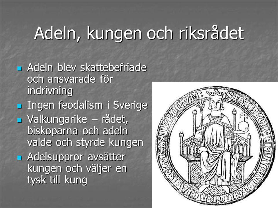 Adeln, kungen och riksrådet