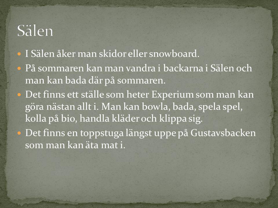 Sälen I Sälen åker man skidor eller snowboard.
