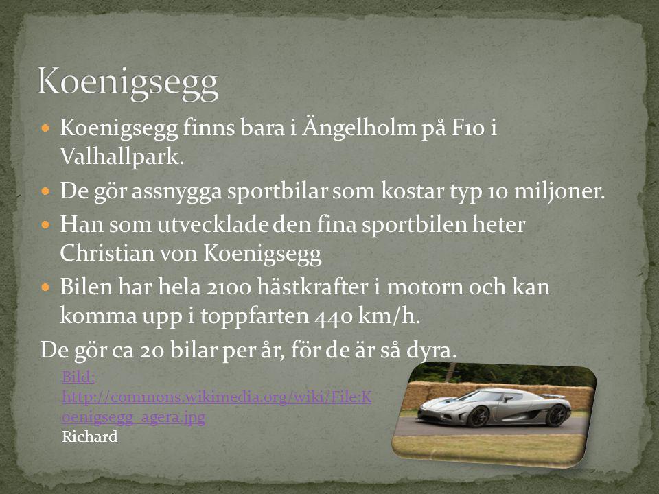 Koenigsegg Koenigsegg finns bara i Ängelholm på F10 i Valhallpark.