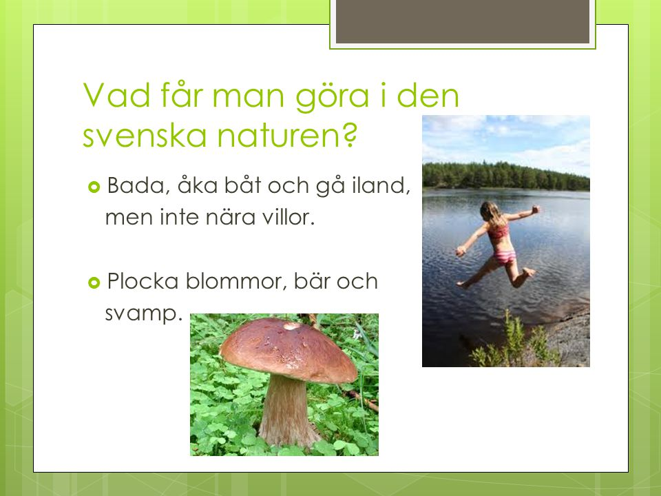 Vad får man göra i den svenska naturen