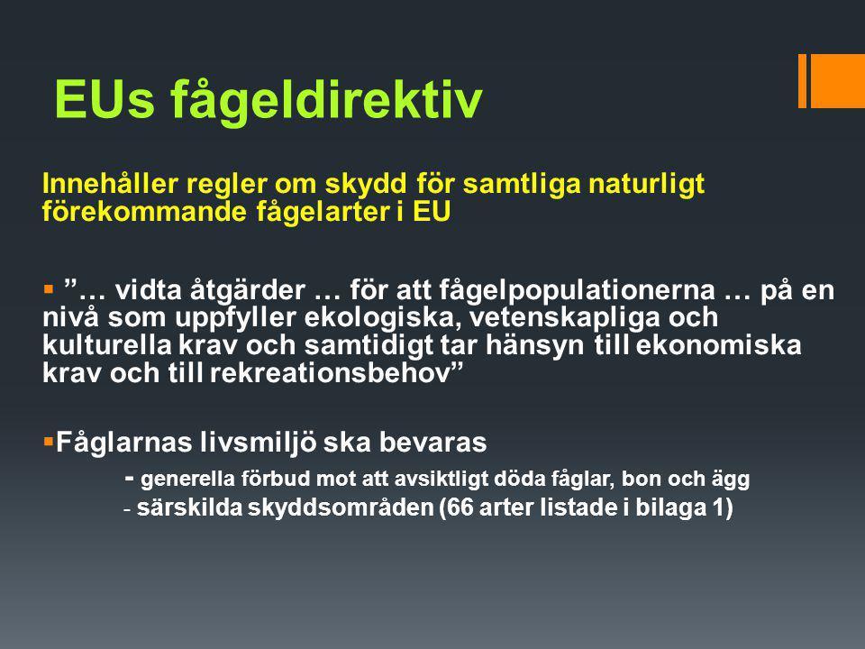 EUs fågeldirektiv Innehåller regler om skydd för samtliga naturligt förekommande fågelarter i EU.