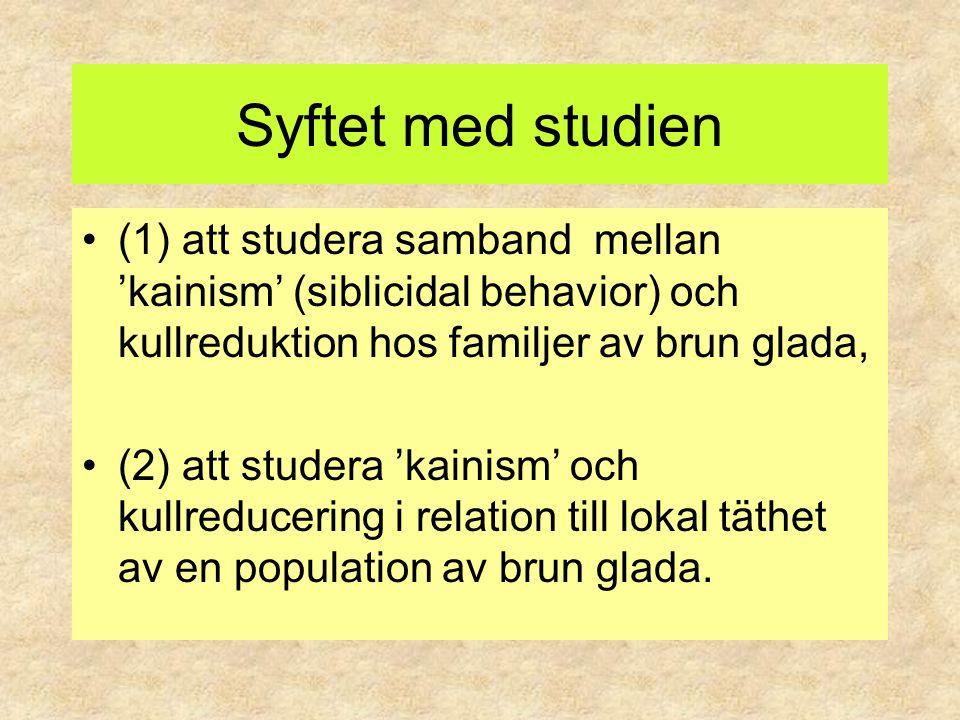 Syftet med studien (1) att studera samband mellan 'kainism' (siblicidal behavior) och kullreduktion hos familjer av brun glada,
