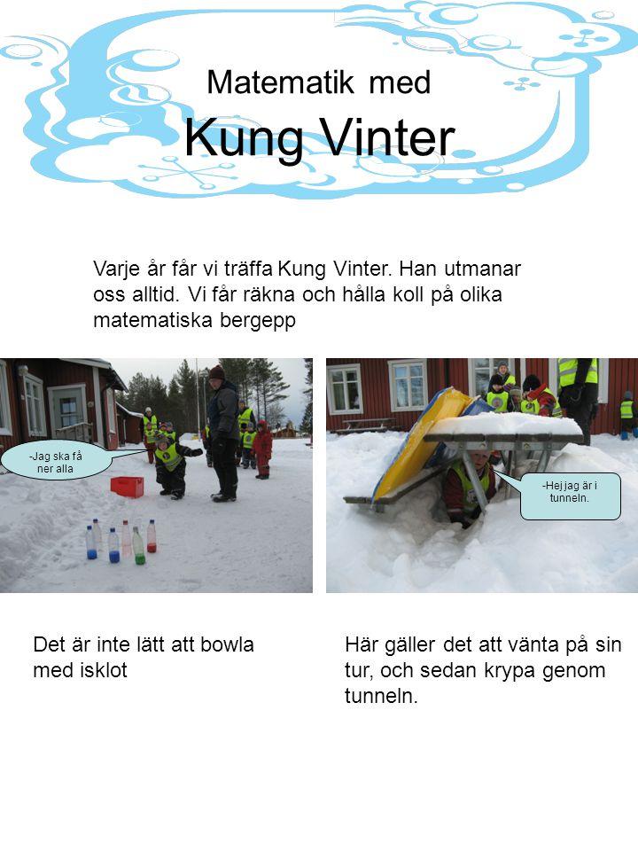 Matematik med Kung Vinter