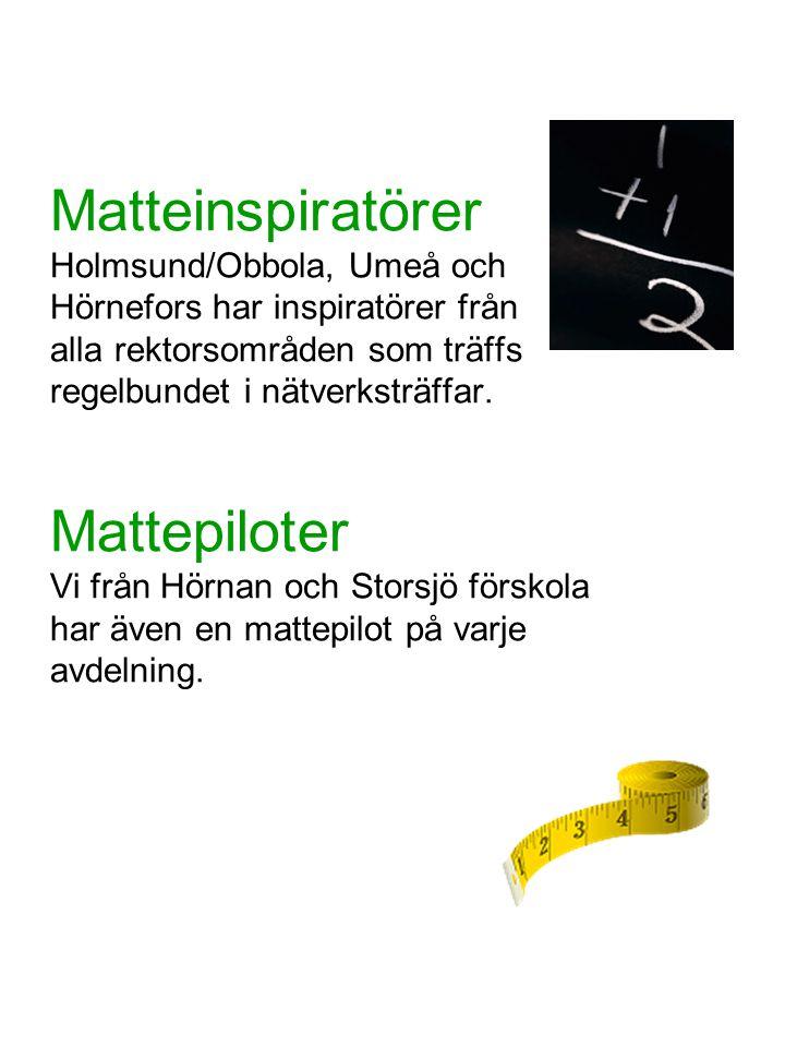 Matteinspiratörer Holmsund/Obbola, Umeå och Hörnefors har inspiratörer från alla rektorsområden som träffs regelbundet i nätverksträffar.
