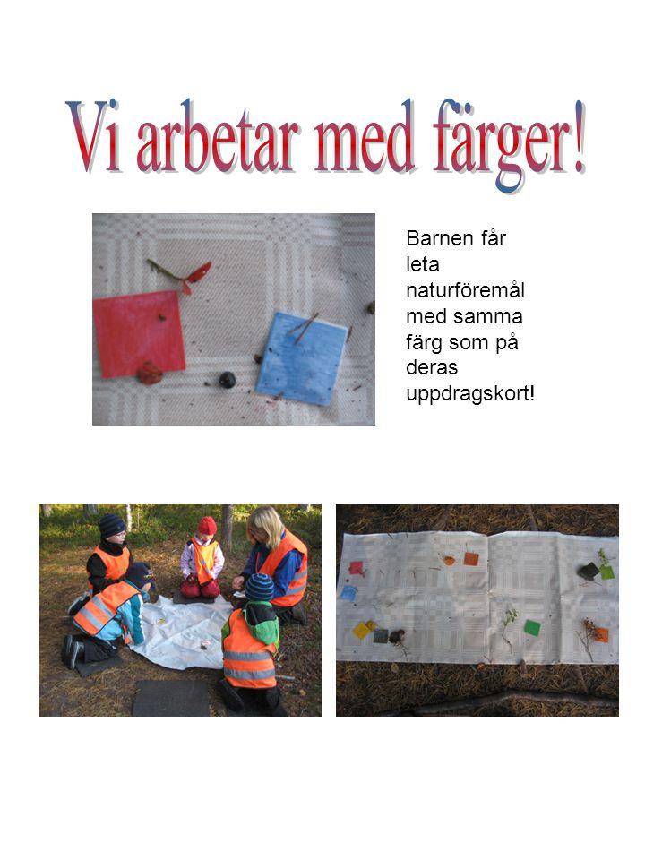 Vi arbetar med färger! Barnen får leta naturföremål med samma färg som på deras uppdragskort!