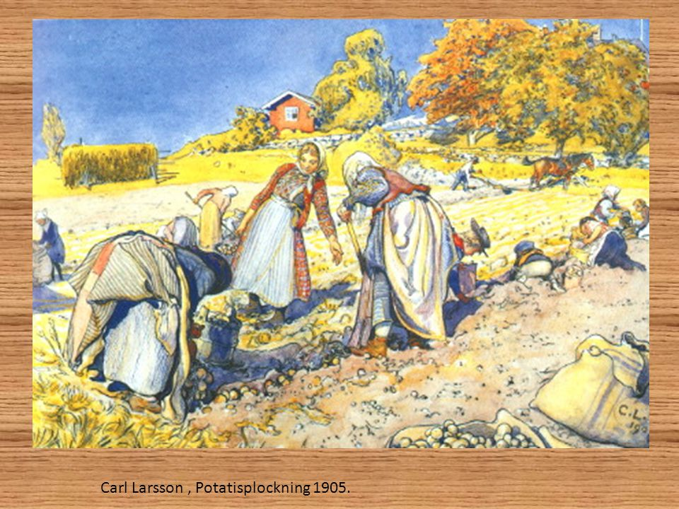 Carl Larsson , Potatisplockning 1905.