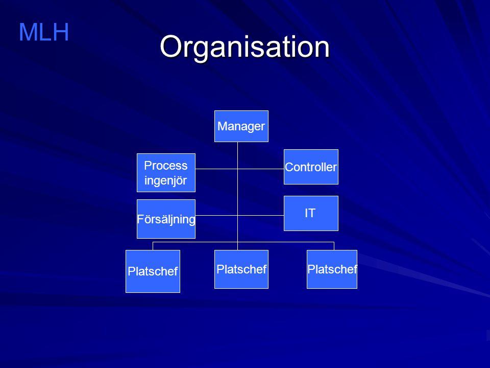 Organisation MLH Manager Controller Process ingenjör IT Försäljning