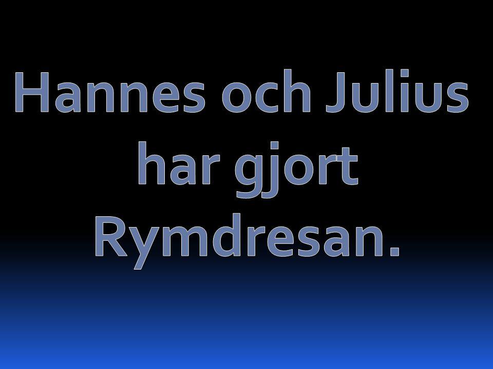 Hannes och Julius har gjort Rymdresan.