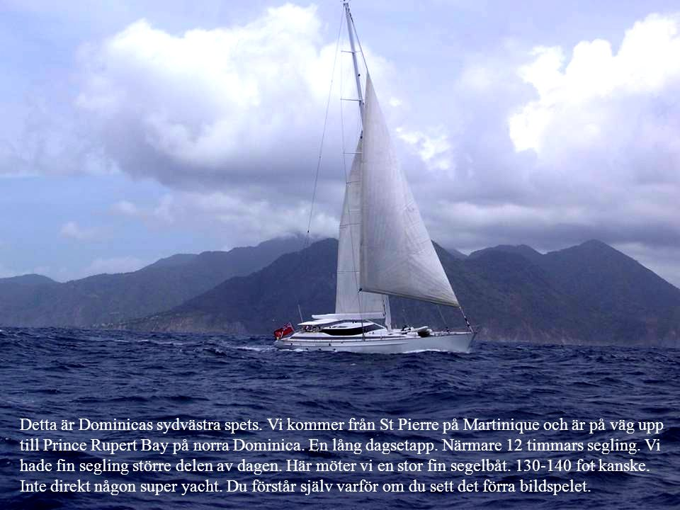 Detta är Dominicas sydvästra spets