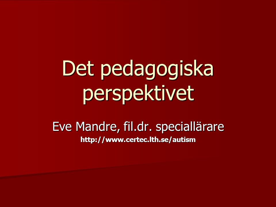 Det pedagogiska perspektivet