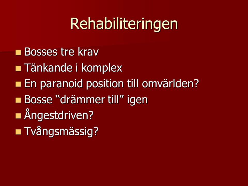 Rehabiliteringen Bosses tre krav Tänkande i komplex