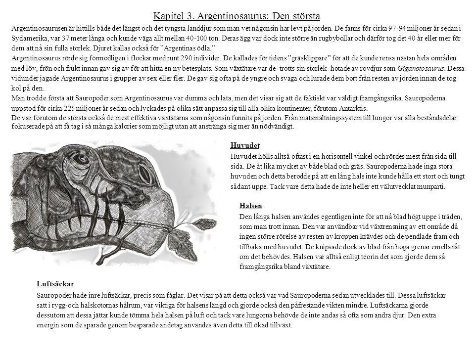 Kapitel 3. Argentinosaurus: Den största