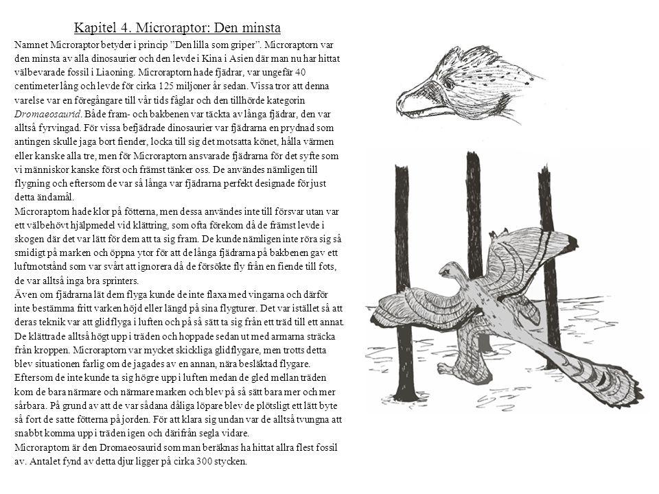 Kapitel 4. Microraptor: Den minsta
