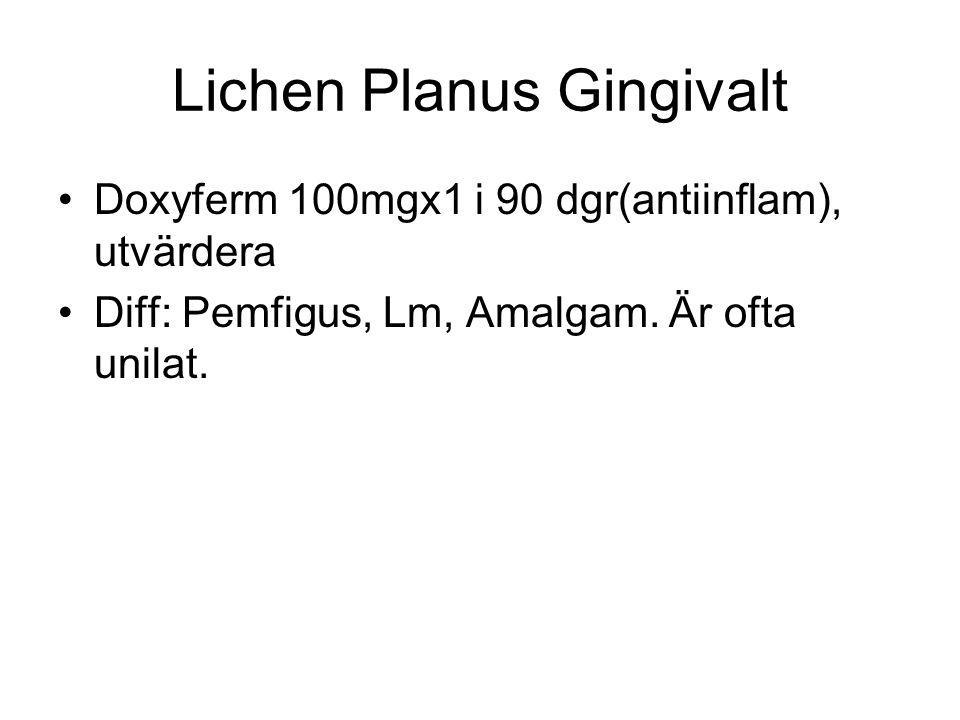 Lichen Planus Gingivalt