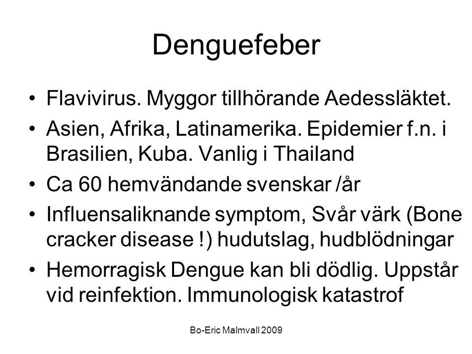 Denguefeber Flavivirus. Myggor tillhörande Aedessläktet.