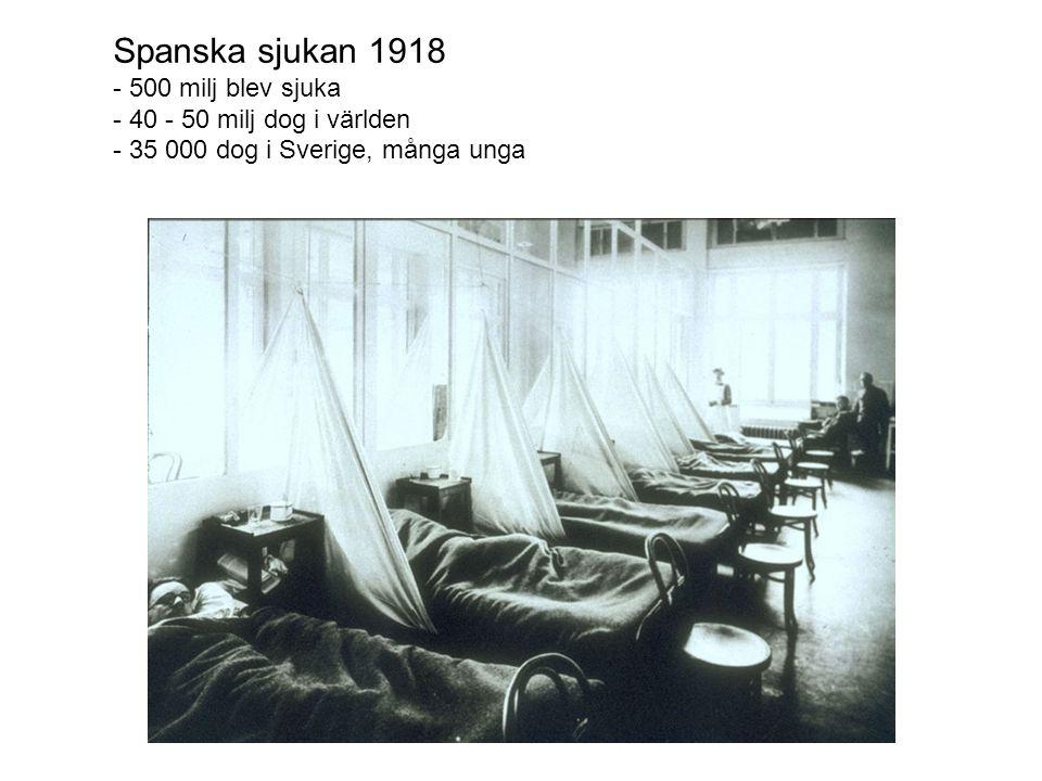 Spanska sjukan 1918 - 500 milj blev sjuka - 40 - 50 milj dog i världen