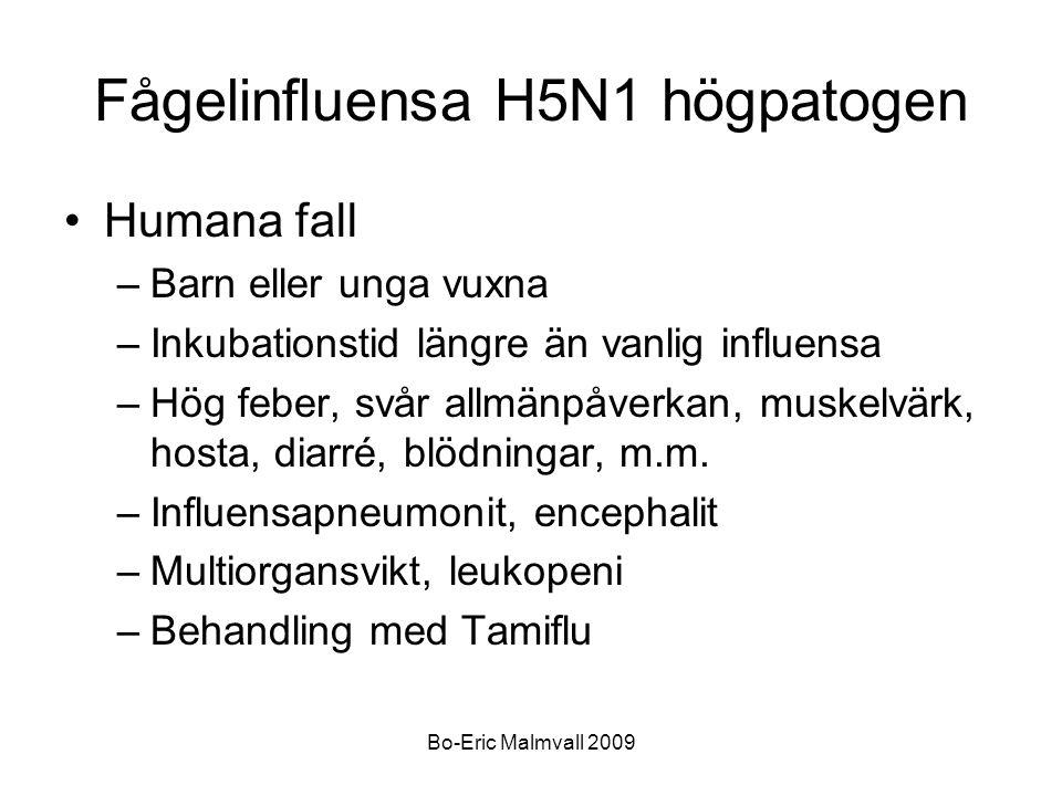 Fågelinfluensa H5N1 högpatogen