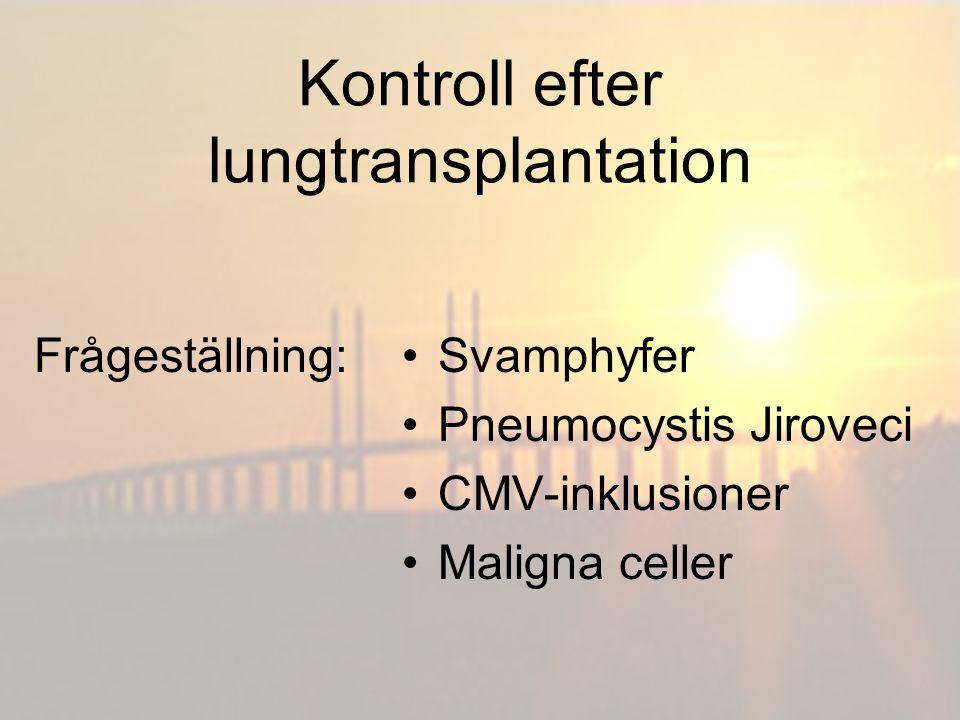Kontroll efter lungtransplantation