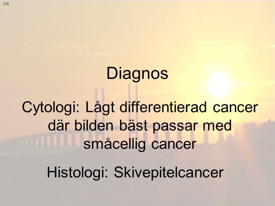 Histologi: Skivepitelcancer