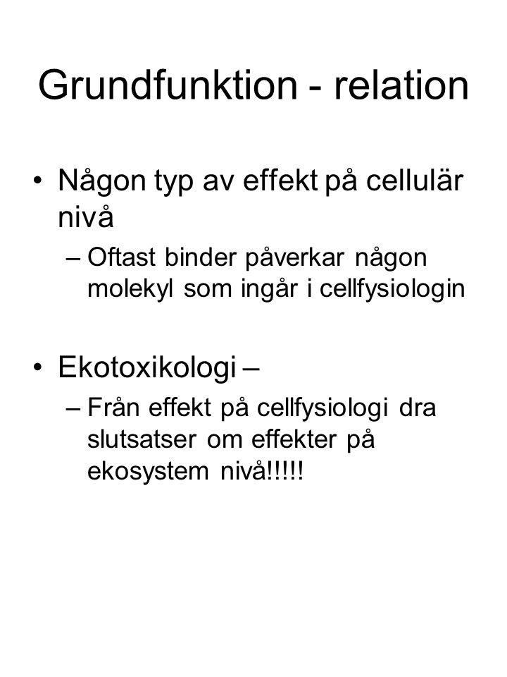 Grundfunktion - relation