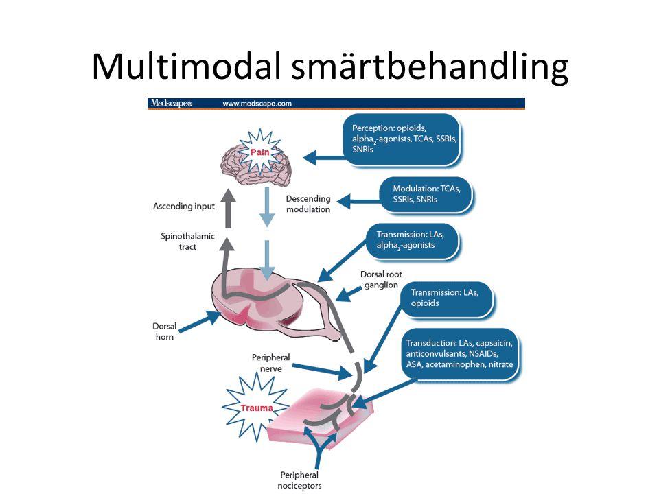 Multimodal smärtbehandling