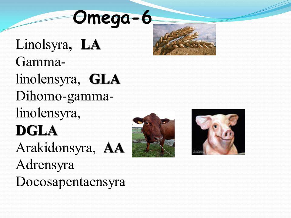 Omega-6 Linolsyra, LA Gamma-linolensyra, GLA Dihomo-gamma-linolensyra, DGLA Arakidonsyra, AA Adrensyra Docosapentaensyra.