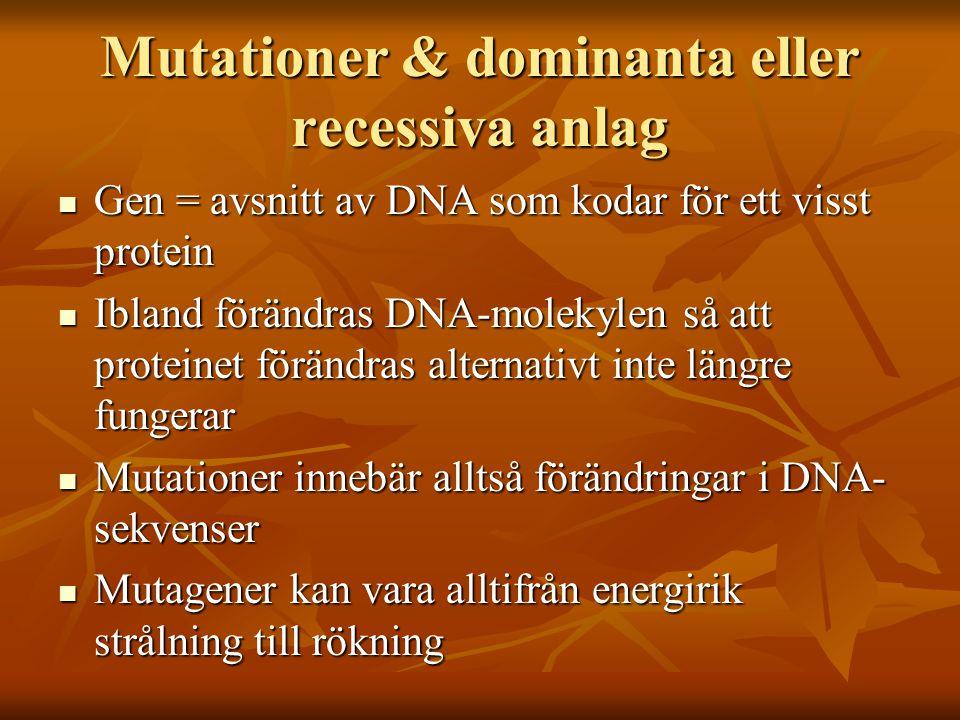 Mutationer & dominanta eller recessiva anlag