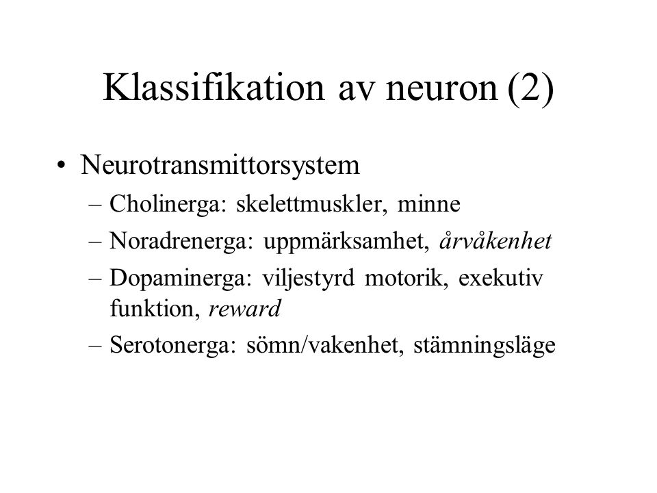 Klassifikation av neuron (2)