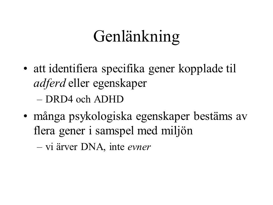Genlänkning att identifiera specifika gener kopplade til adferd eller egenskaper. DRD4 och ADHD.