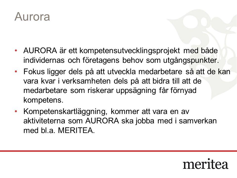Aurora AURORA är ett kompetensutvecklingsprojekt med både individernas och företagens behov som utgångspunkter.