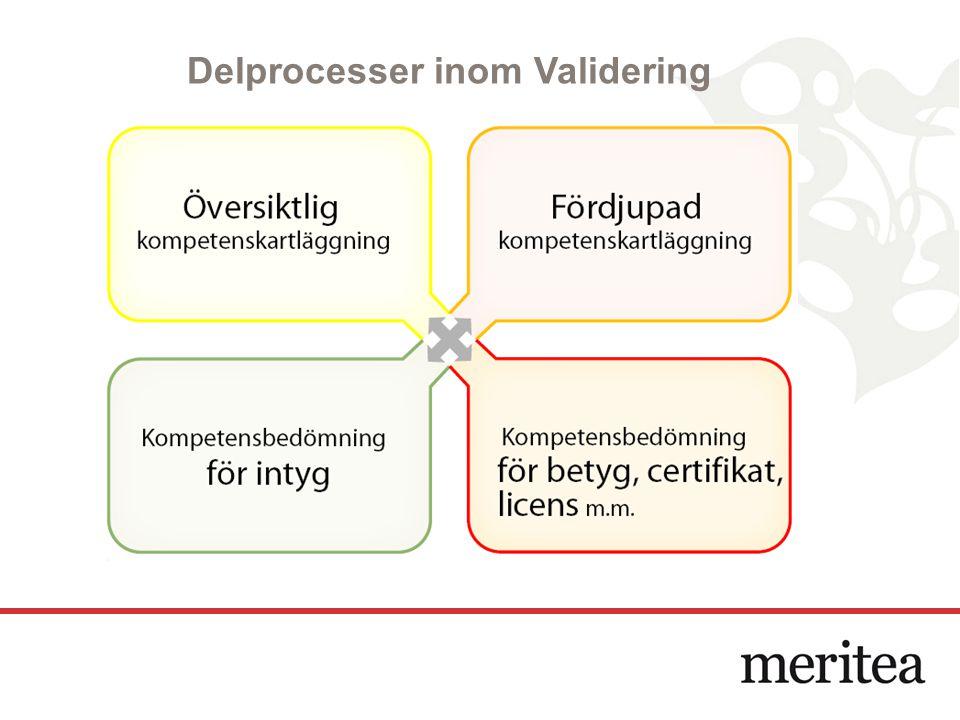 Delprocesser inom Validering