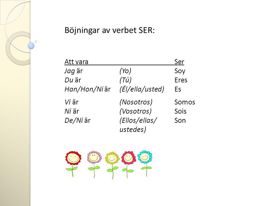 Böjningar av verbet SER: