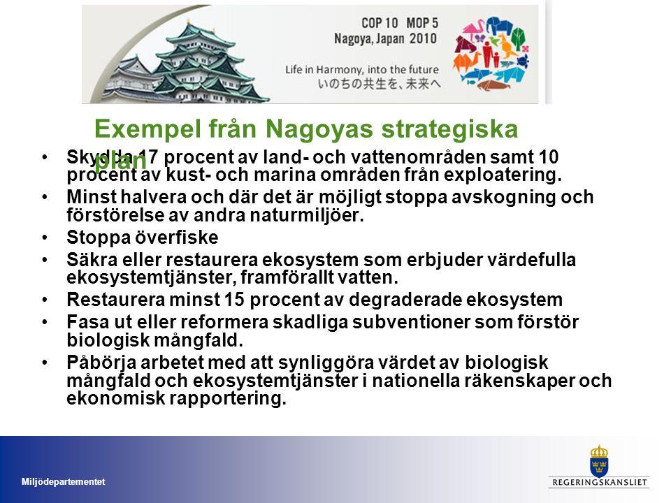 Exempel från Nagoyas strategiska plan