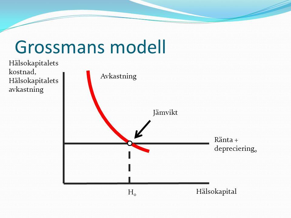 Grossmans modell Hälsokapitalets kostnad, Hälsokapitalets avkastning