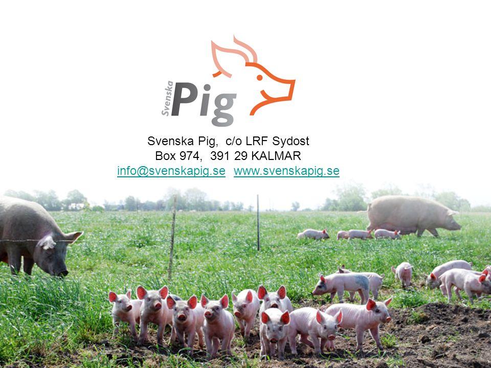 Svenska Pig, c/o LRF Sydost Box 974, 391 29 KALMAR
