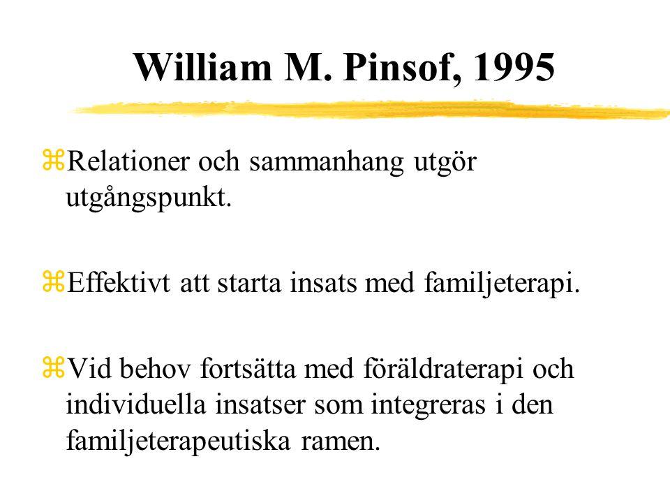 William M. Pinsof, 1995 Relationer och sammanhang utgör utgångspunkt.
