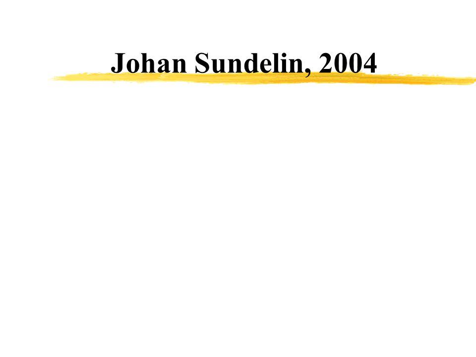 Johan Sundelin, 2004