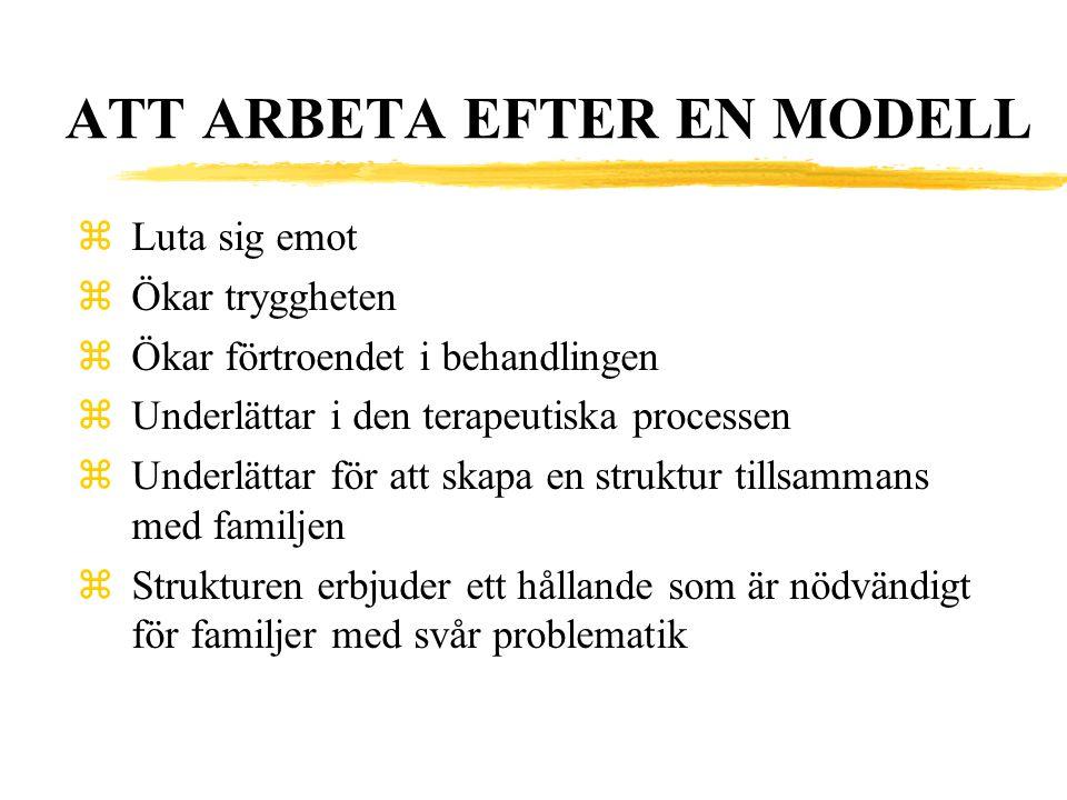 ATT ARBETA EFTER EN MODELL