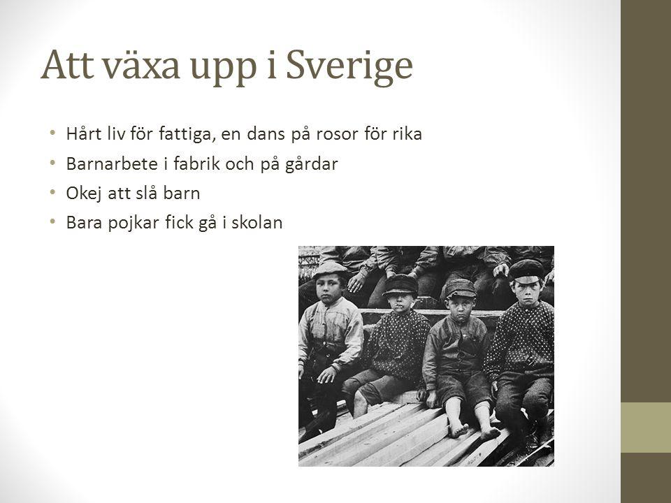 Att växa upp i Sverige Hårt liv för fattiga, en dans på rosor för rika