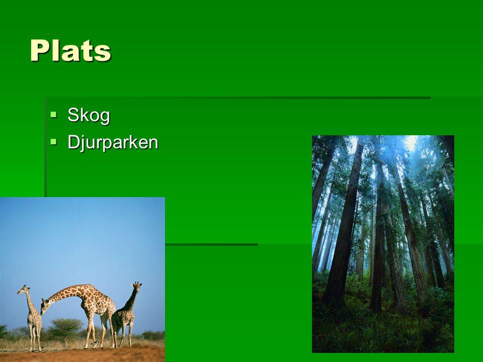 Plats Skog Djurparken