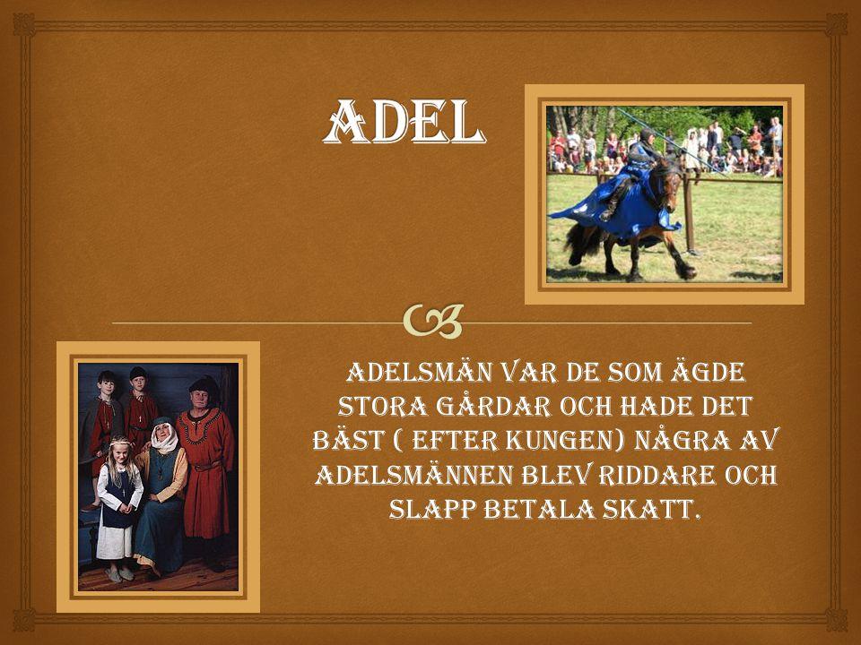 Adel Adelsmän var de som ägde stora gårdar och hade det bäst ( efter kungen) Några av Adelsmännen blev riddare och slapp betala skatt.