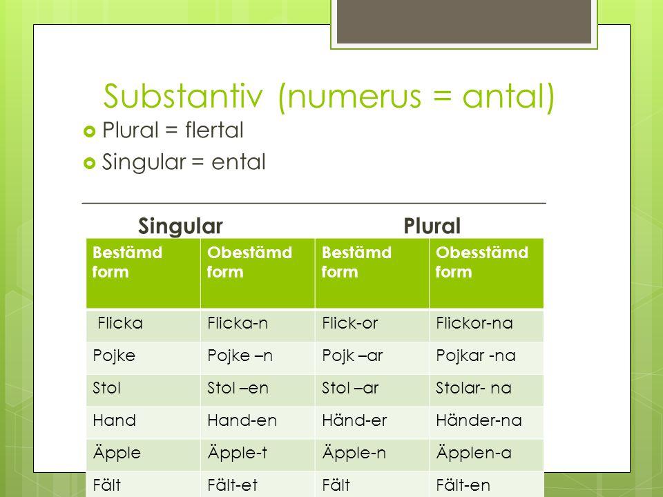 Substantiv (numerus = antal)