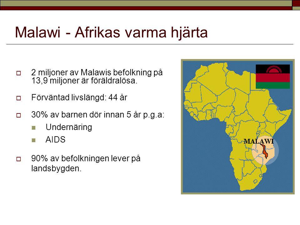 Malawi - Afrikas varma hjärta