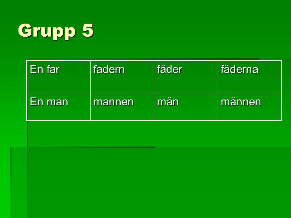 Grupp 5 En far fadern fäder fäderna En man mannen män männen