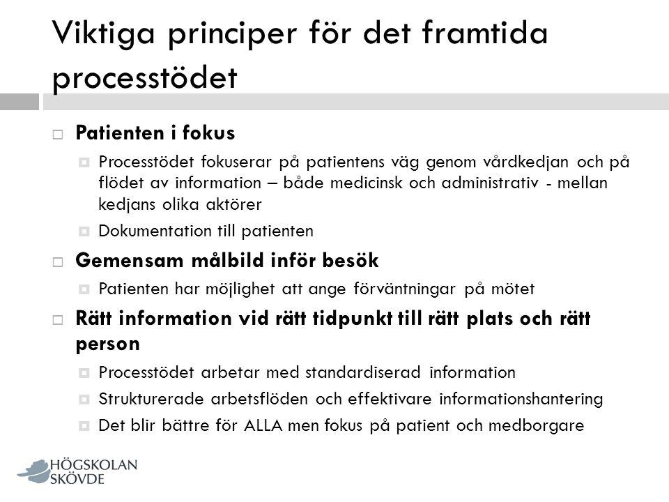 Viktiga principer för det framtida processtödet