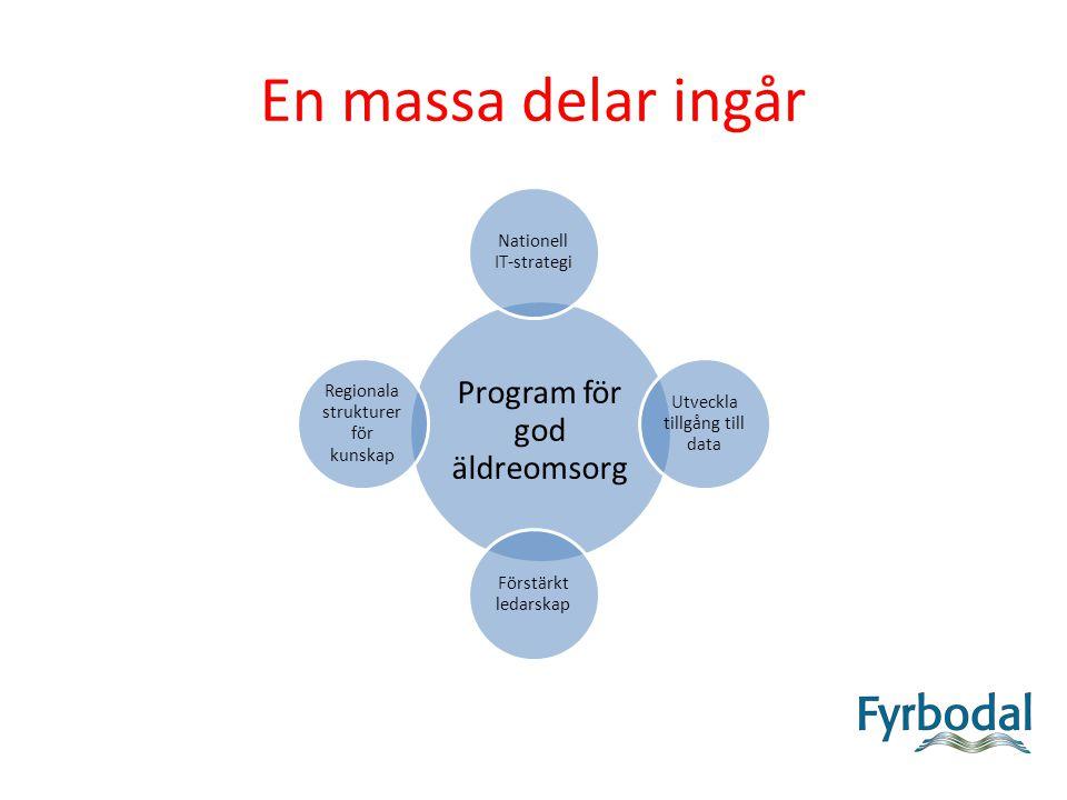 En massa delar ingår Program för god äldreomsorg Nationell IT-strategi