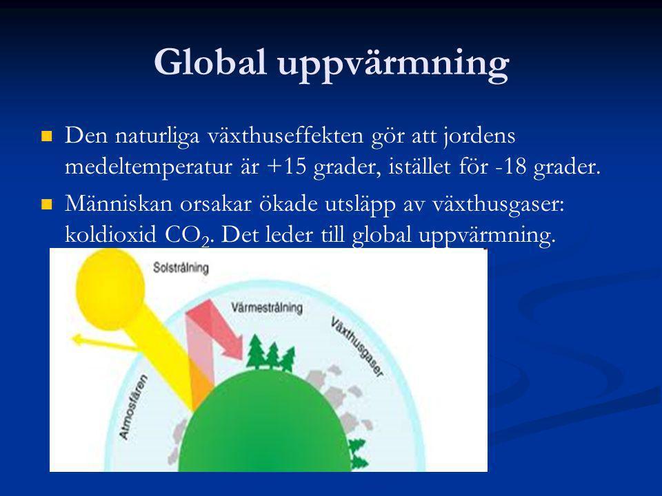 Global uppvärmning Den naturliga växthuseffekten gör att jordens medeltemperatur är +15 grader, istället för -18 grader.