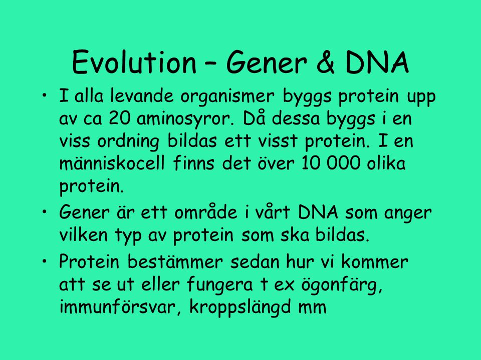 Evolution – Gener & DNA