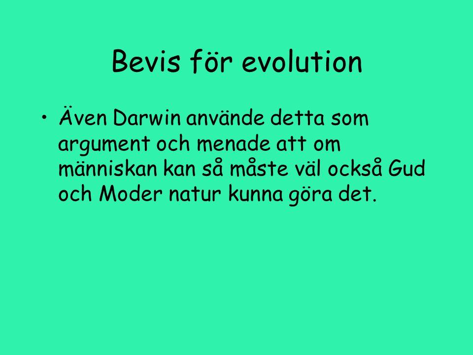 Bevis för evolution Även Darwin använde detta som argument och menade att om människan kan så måste väl också Gud och Moder natur kunna göra det.
