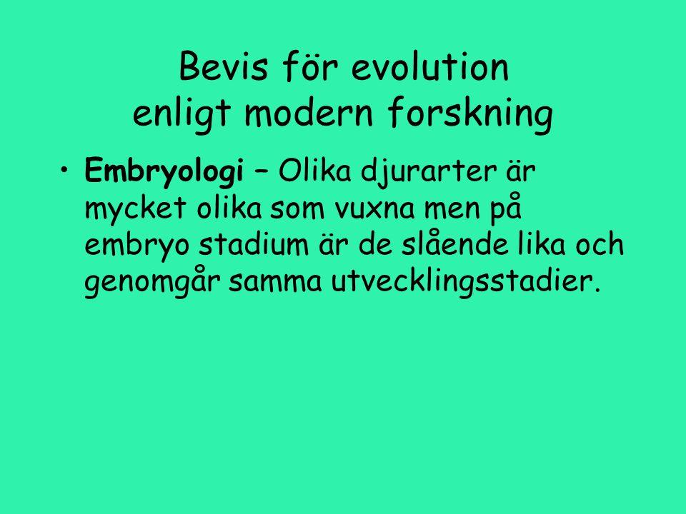 Bevis för evolution enligt modern forskning